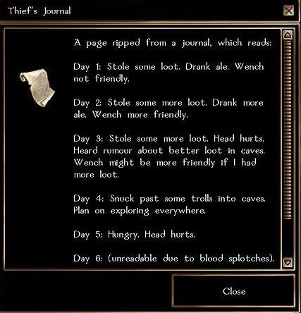 Thief's journal